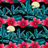 Tropical hibiscus and palm tree at night seamless pattern Royalty Free Stock Image