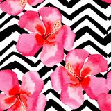 Tropical hibiscus watercolor pattern, black and white zigzag bac Royalty Free Stock Images