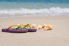 Tropical Holiday beach getaway. Flip flops and conch shells on smooth sand and soft wave background Stock Photo