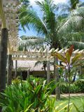 Tropical holiday resort. Bohol in the Philippines Stock Photography