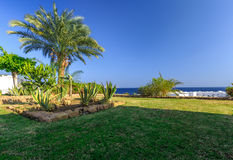 Tropical holiday resort set in neat manicured lawns, Egypt Royalty Free Stock Image