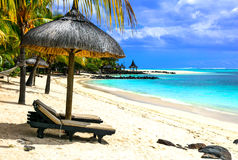 Tropical holidays in Mauritius island. Royalty Free Stock Photo