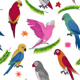 Tropical Holidays Seamless Pattern with Exotic Parrots Royalty Free Stock Image