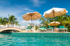 Tropical holidays at swimming pool royalty free stock photography