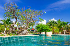 Tropical holidays at swimming pool. In Thailand Royalty Free Stock Photography