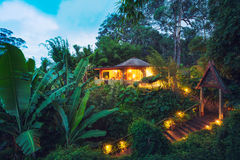 Tropical Home in the Jungle at Sunset Royalty Free Stock Photos