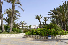 Tropical hotel on the Atlantic Ocean in Agdir Stock Photos