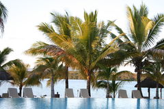 Tropical Hotel Pool Royalty Free Stock Photos