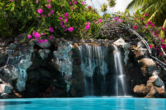 Tropical hotel pool waterfall + bougainvillea stock image