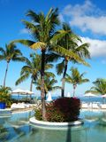 Tropical hotel swimming pool