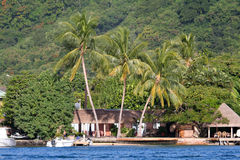 Tropical House Stock Images