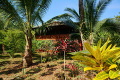 Tropical house and garden Stock Photos