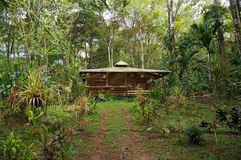 Tropical house in the jungle of Costa Rica Stock Photography