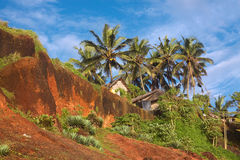Tropical Huts on a Red Cliff Royalty Free Stock Photo