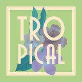 Tropical icon design Stock Images