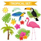 Tropical icon set with birds and flowers, flat, cartoon style. Exotic collection of design elements with toucan, parrot. Plant, flamingo, flower. Paradise Royalty Free Stock Photo