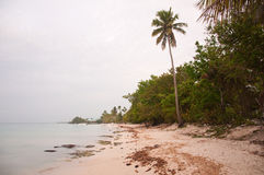 Tropical idyllic paradise beach. Carribean beach of bayahibe dominican republic royalty free stock image