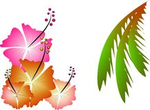 Tropical illustration. Few hibiscus flowers and palm tree leaves Royalty Free Stock Image