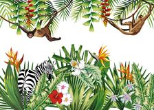 Tropical illustration with flowers plants monkey zebra stock illustration