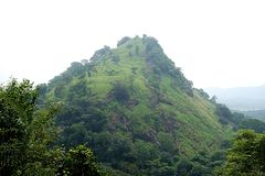 A Foggy Jungle Mountain Peak. A tropical image of a steep pointy mountain sparsely dotted with trees shrouded in a mist from the deep jungle surrounding it early stock images