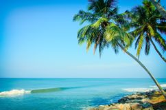 Tropical Indian village in Varkala, Kerala, India. Tropical Indian village with coconut palm trees near the road and blue ocean in Varkala, Kerala, India stock photography