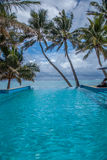 Tropical Infinity. Oceanside infinity pool with palm trees in Rarotonga, Cook Islands Royalty Free Stock Images