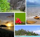 Tropical installation. Seychelles. Royalty Free Stock Photo