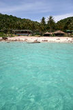 Tropical isand from water Royalty Free Stock Photo