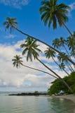Tropical island. A tropical holiday island in samoa Royalty Free Stock Photo