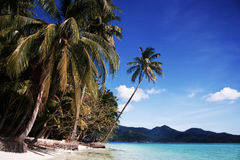 Tropical island. Tropical island scene in Thailand with turquoise water, white sand and palms royalty free stock photography