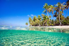 Tropical island. Beautiful tropical island at Tikehau atoll in French Polynesia Royalty Free Stock Photography