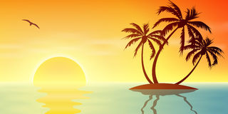 Tropical Island. A Tropical Island Sunset, Sunrise with Palm Trees Stock Photography