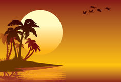 Tropical island. Palm trees on a beach Royalty Free Stock Images