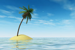 Tropical island. With coconut palm tree Royalty Free Stock Images