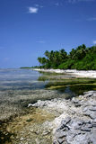 Tropical island. In maldives ( Addu Atoll Stock Photography