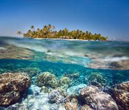 Tropical island above and underwater Royalty Free Stock Photo