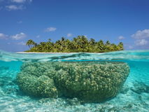 Tropical island above and underwater with coral Stock Photography