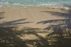 Tropical island beach. Stock Photography