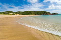 Tropical Island Beach. A wave peacefully passes over the beautiful soft sand on Great Keppel Island,on Queensland's Great Barrier Reef stock photo