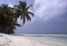 Tropical island beach. Deserted beach of tropical island royalty free stock photography