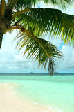 Tropical island beach Royalty Free Stock Photos