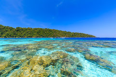 Tropical island beach and clear blue lagoon water with blue sky at kho Surin  Island, Phang Nga Province, South of Thailand Royalty Free Stock Images