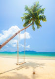 Tropical island beach with coconut palm trees and swing Stock Images