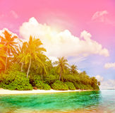 Tropical island beach with colorful sunset sky. Tropical beach with colorful sunset sky. Paradise island with palm trees. Vintage style toned picture Stock Photos