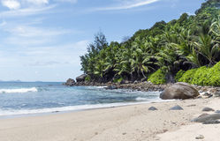 Tropical island beach Stock Photography