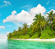Tropical island beach with palm trees blue sky. Landscape of tropical island beach with palm trees and cloudy blue sky Royalty Free Stock Photo