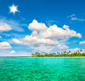 Tropical island beach with palm trees and blue sky. Landscape of tropical island beach with palm trees and sunny blue sky Royalty Free Stock Images