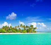 Tropical island beach with palm trees and cloudy blue sky stock photos