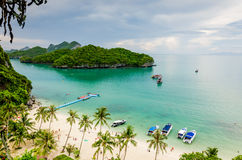 Tropical Island Beach with Palm Trees and White Sand. Beach in Mu Ko Ang Thong National Marine Park Thailand. The beach, surrounded by palm trees and jungle, has Stock Images