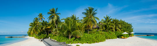 Tropical island beach panorama view with palm trees at Maldives. Tropical island beach panorama view with palm trees Stock Images